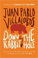 Juan Pablo Villalobos: Down the Rabbit Hole