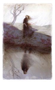 Illustration fra bogen (Ill.: Rovina Cai)